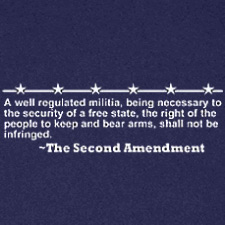 THE SECOND AMENDMENT PRO GUN